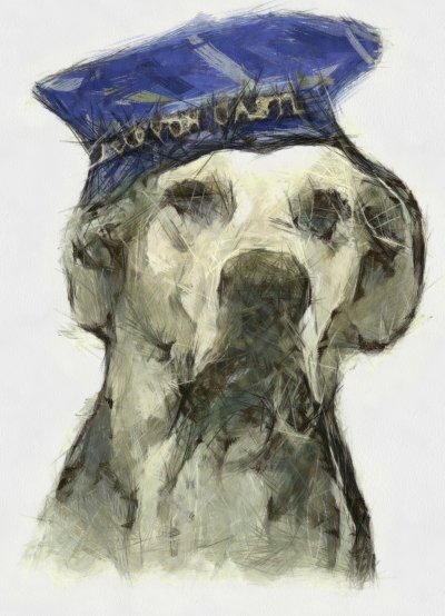 Inspire Your Dog Dogs In Wartime History Navy Army RAF Hero Heroic Just Nuisance Dog